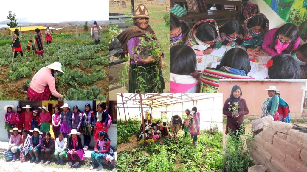 digitale Veranstaltungen – Agroökologische Ausbildung für Frauen in Bolivien